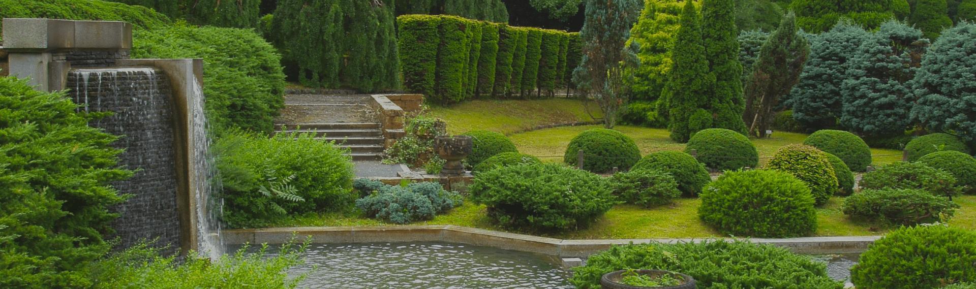 А как выглядит сад вашей мечты?